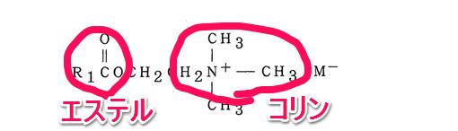 コリンエステルの構造式