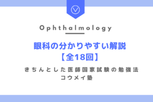【目次】眼科の分かりやすい解説【全18回】